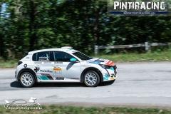 Pintiracing_Topp-Cars_Rally_Team_2021_06_23_16