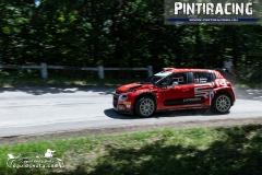 Pintiracing_Topp-Cars_Rally_Team_2021_06_23_17