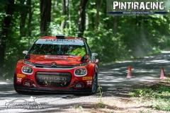 Pintiracing_Topp-Cars_Rally_Team_2021_06_23_23