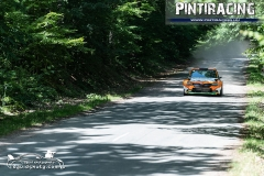 Pintiracing_Topp-Cars_Rally_Team_2021_06_23_32